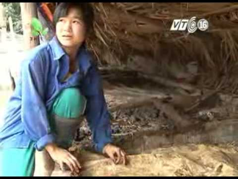 Nhanonglamgiau.com-Ky-thuat-nuoi-trun-que