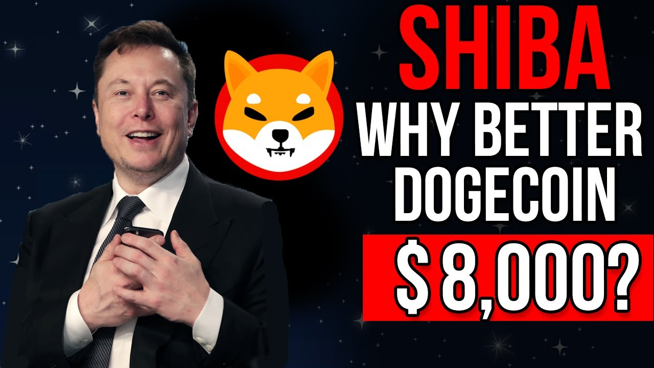 Elon Musk Reveals Why SHIB Better Than Dogecoin | Shiba Inu Price Prediction