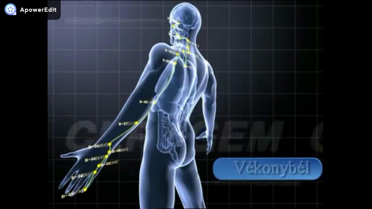 magas vérnyomás a válsága a betegség magas vérnyomásának tünete