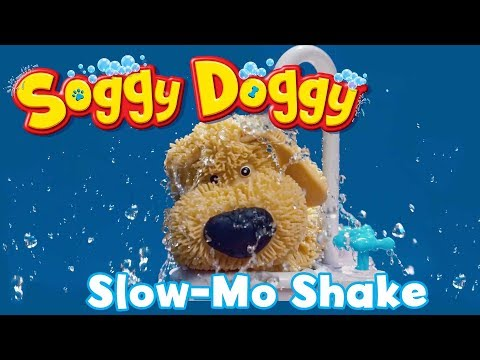Soggy Doggy - Soggy Doggies Shake In Slow Mo!