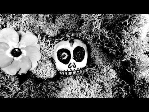"The High Llamas ""McKain James"" (Official Video)"