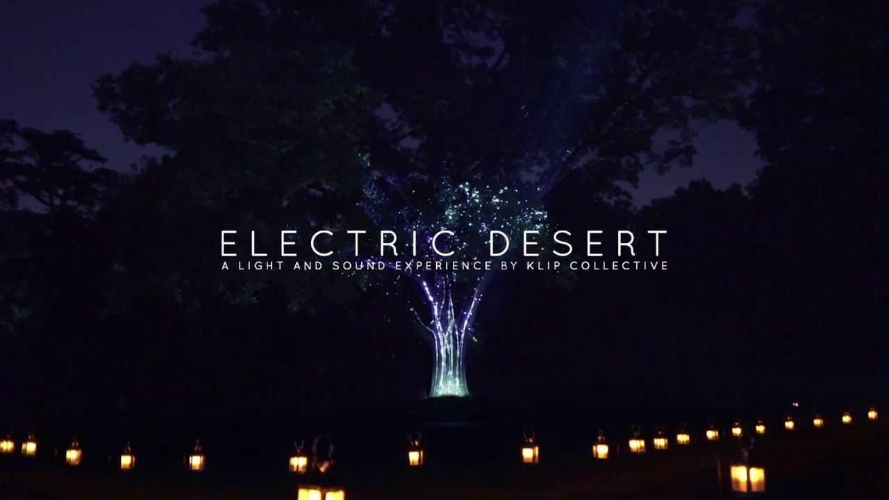 Electric Desert A Light And Sound Experience
