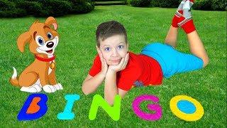 Макс играет с щенком Бинго | Веселая Песня для детей