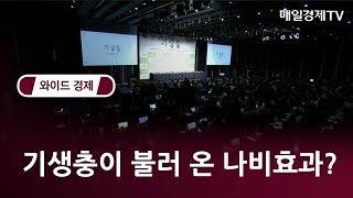 기생충이 불러온 나비효과? - 오동진 영화평론가 / 와이드경제1 / 매일경제TV