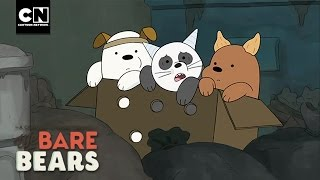 Baby Bears on the Move I We Bare Bears I Cartoon Network