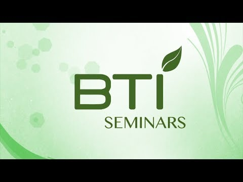 Summer intern seminars: Genetic engineering of food crops
