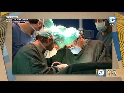 Inteligencia artificial en trasplantes hepáticos