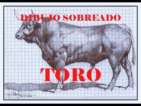 Video De Dibujo De Toro Aplicando Las Tecnicas De Las Sombras