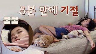 [낮잠 타임] 바쁜 민박집 일에 효리&아이유는 기절!(zzz) 효리네 민박 4회