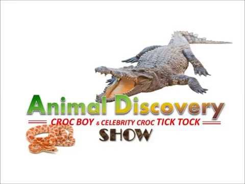 Brunei Animal Discovery