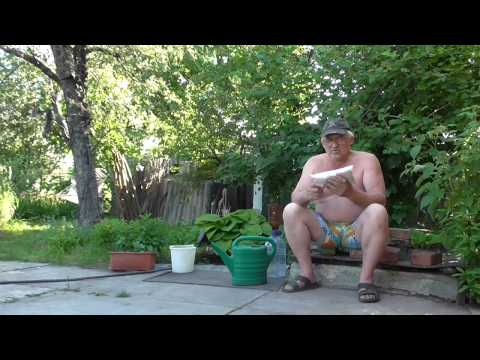 Ктон интернет магазин сад и огород, саженцы, семена