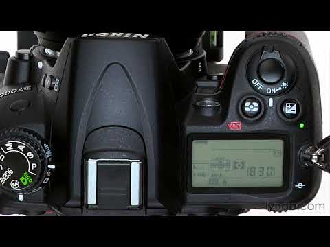 Nikon D7000 tutorial: Using the autofocus modes | lynda.com