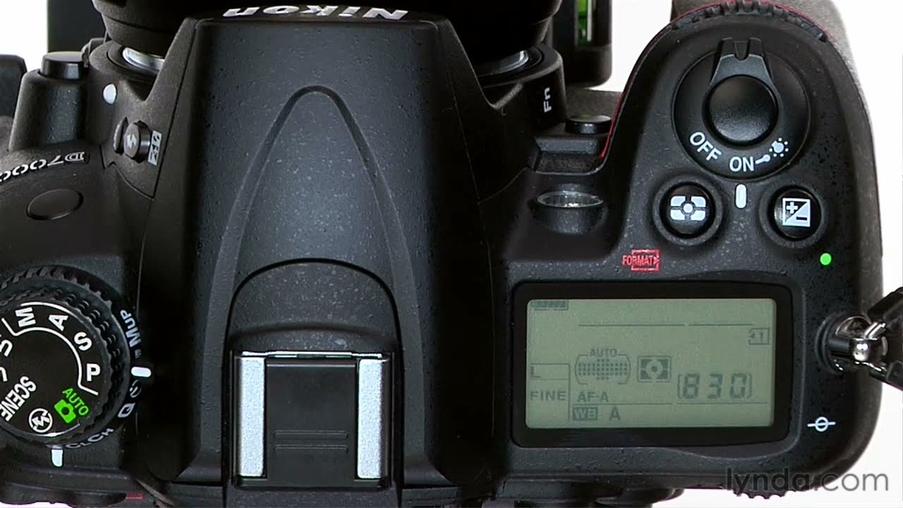 Nikon D7000 tutorial: Using the autofocus modes | lynda.com - YouTube