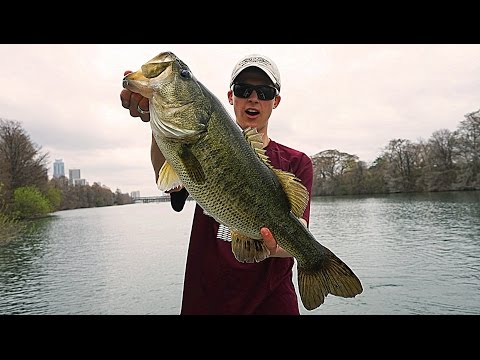 catching-giant-bass-bed-fishing(sight-fishing)-|-tylersreelfishing