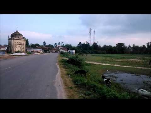 Harimau near Jagdishpur