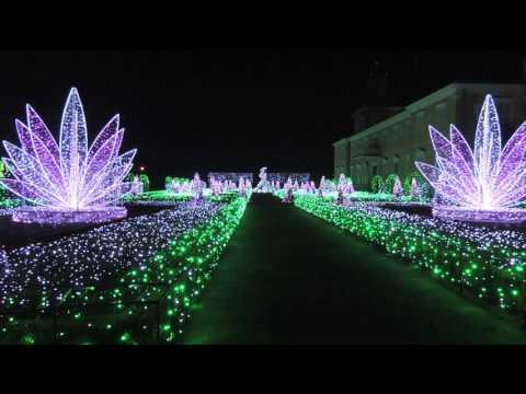 Wilanów Warszawa pokaz multimedialny ogród świateł
