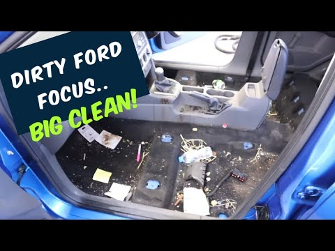 Cleaning a filthy Ford Focus