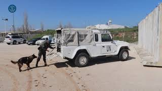 BRILIB XXXIV. K9 unit in Lebanon