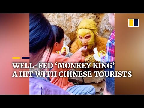 Best job ever? Well-fed 'Monkey King' a hit with Chinese tourists