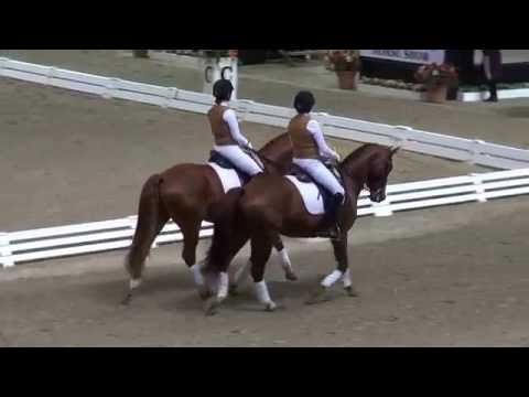 Set #3 - Evening of Musical Freestlyes 2015 - Del Mar National Horse Show