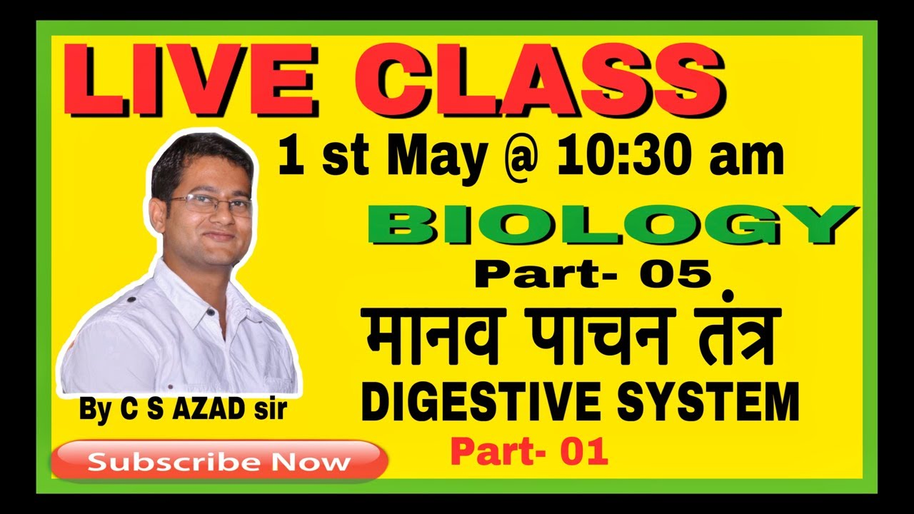 Human digestive system in Hindi and English //मानव पाचन ...