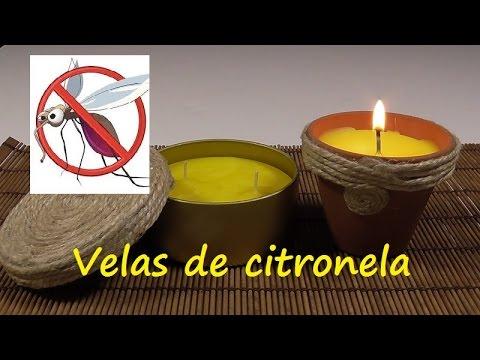 C mo hacer velas para ahuyentar mosquitos con citronela youtube - Como ahuyentar mosquitos ...
