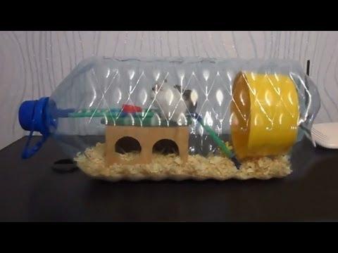 Как сделать временный домик для хомячков