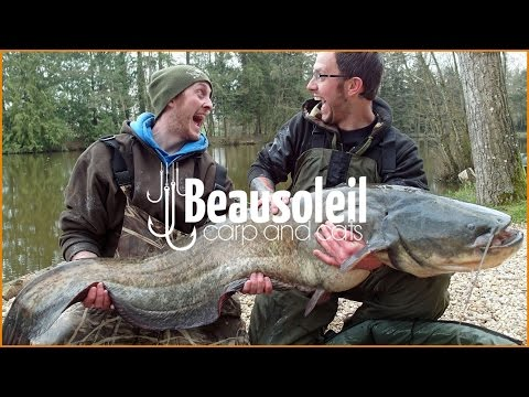 Carp Fishing In France : Week Session With Multiple 30s And A Big 90lb Catfish At Night
