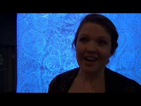 Kirralee Baker interviewed at Living Data 2013: Art from Climate Science