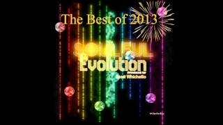 Soulful Evolution The Best of 2013 Show (88)