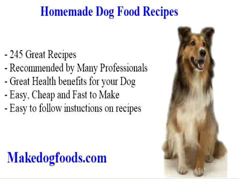 recipes dog food