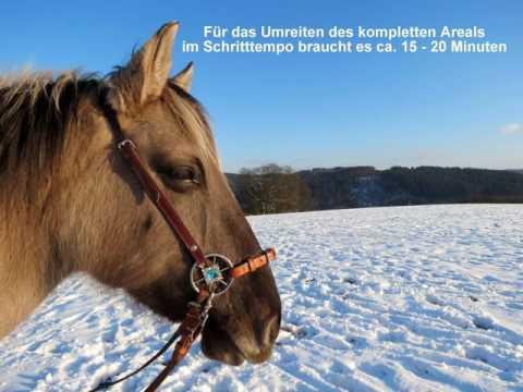 LG-Zaum Winterimpressionen mit Tipps für glückliche, gesunde Pferde