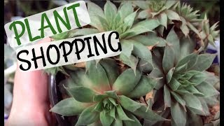 Plant Shopping At Lowe's