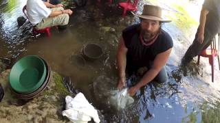 Gold Panning  Angels Camp