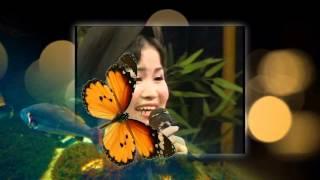 HOA THƠM BƯỚM LƯỢN - Hòa tấu Nguyễn Tiến