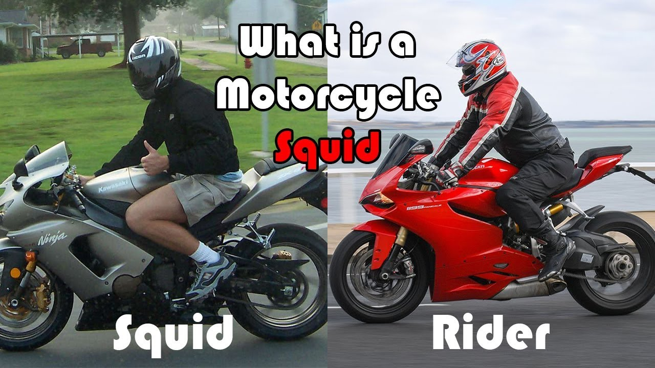 aefe9e273 What is a Motorcycle Squid [Hindi] - YouTube