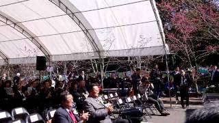 櫻花交換中日交流櫻花祭典在台灣仁愛鄉.