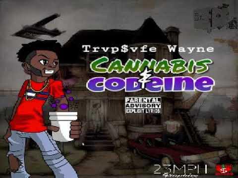 Trvp$vfe Wayne - Freestyle prod. by Beatz Era