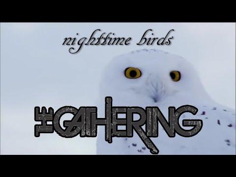 The Gathering -  Nighttime Birds   (official lyrics video) HD