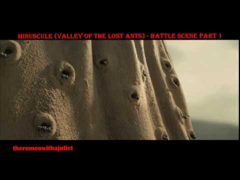 Download MINUSCULE (Valley of the Lost Ants) -  Battle Scene  (Part 1/4)