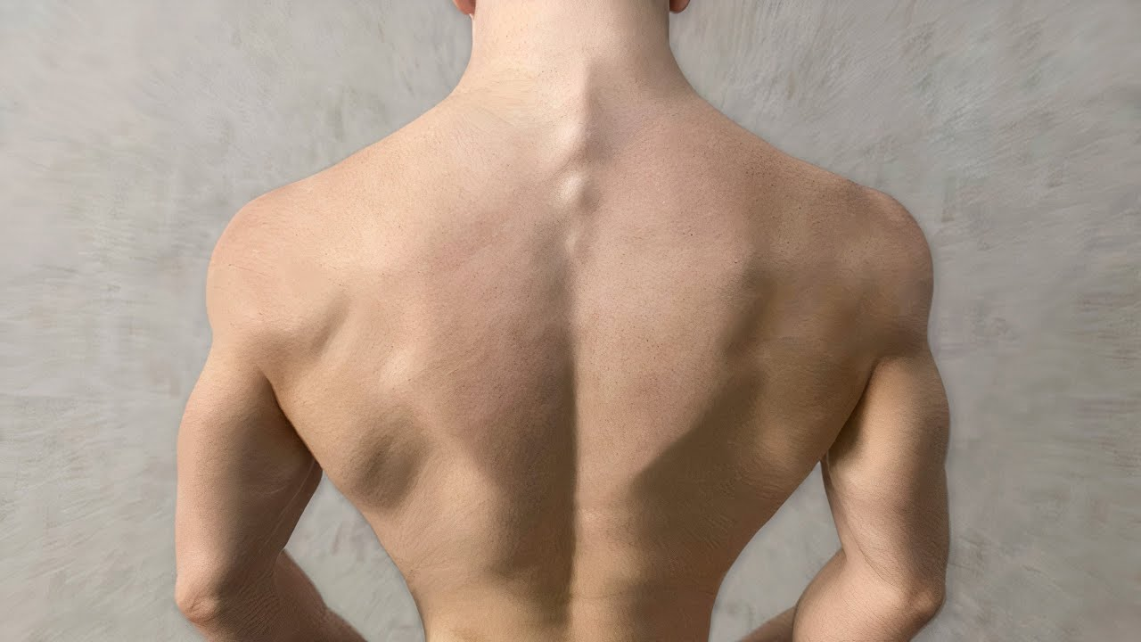 7 Exercises Make Your Back Grow ( DO AT HOME )