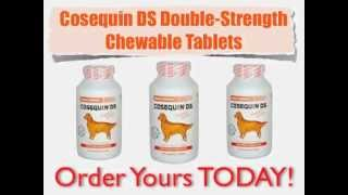 Cosequin for Dogs - 20% Discount - Free Shipping
