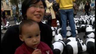 Pandas am Kölner Neumarkt