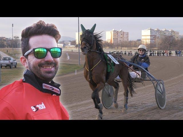 Lóversenyzők lettünk ! Pamkutya Kalandok #20
