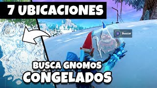 look for CONGELATED GNOMOS *REAL LOCATION* FORTNITE CHALLENGE/MISION SEASON 7 WEEK 6