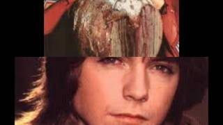 The Partridge Family-It