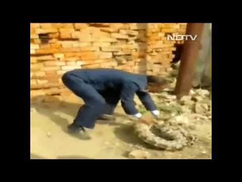 A massive 12 feet Python captured from Allahabad college , इलाहाबाद कालेज से एक  12 फूट का अजगर