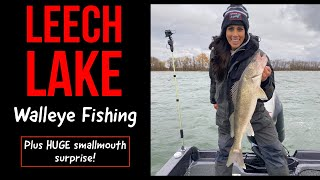 MONSTER SMALLMOUTH!! Leech Lake Fall Fishing 2020