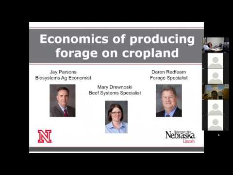 Economics of Forages on Cropland