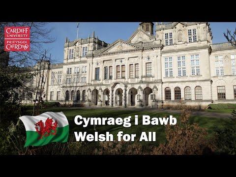 Cymraeg i Bawb / Welsh for All